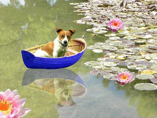 The Boat Is Back In Town by Zoe Marlowe