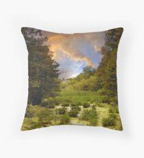 Wetlands Sunset Throw Pillow