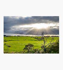 Shining at greens Photographic Print