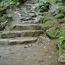 Stone Steps by WickedJuggalo