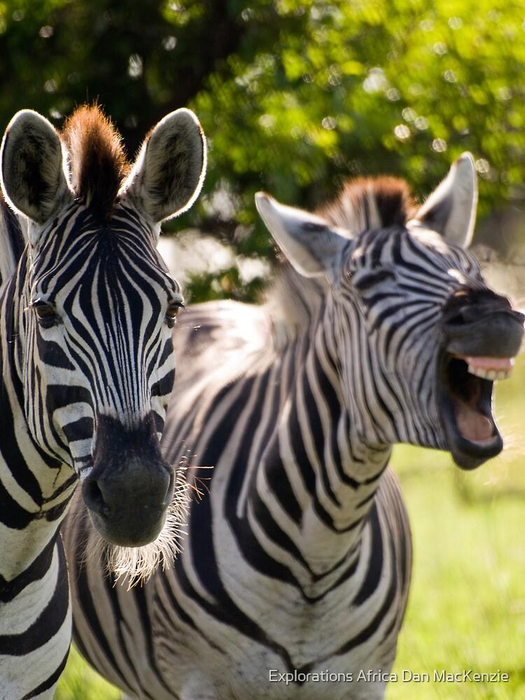 You gotta be kiddin me!! by Explorations Africa Dan MacKenzie