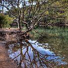 Still Water REFLECTION by Jason Ruth