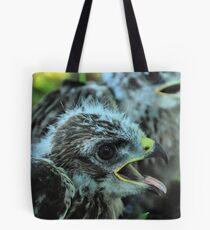 Buteo buteo - Common Buzzard chicks Tote Bag