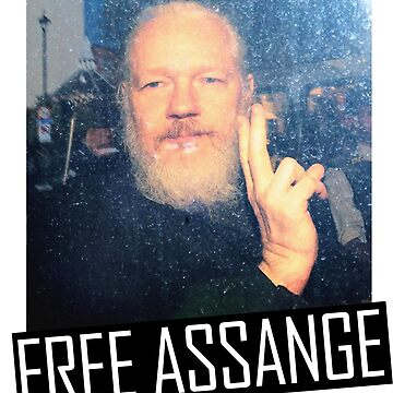 Free Assange by coinho
