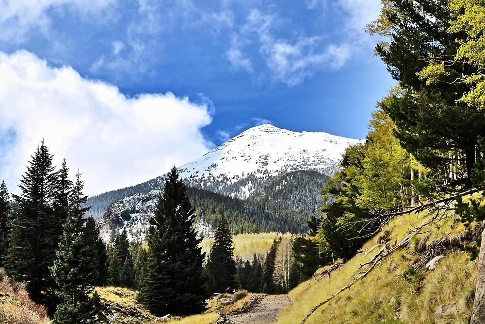 Mountain Glory by quantumnatura