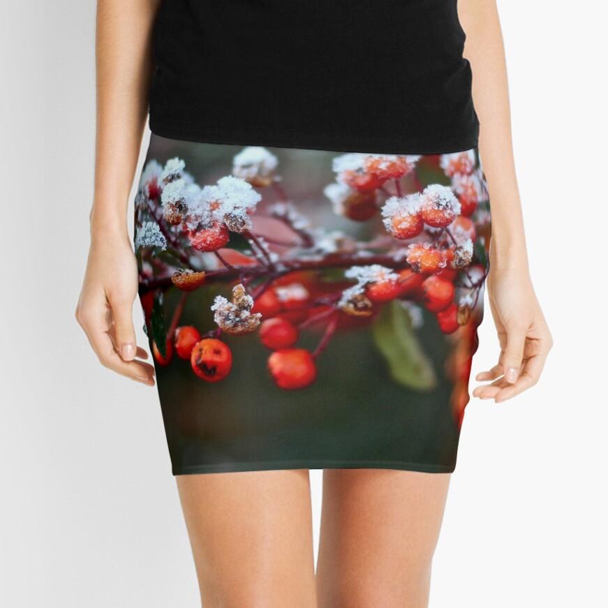 Winter's Kiss Mini Skirt