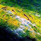 Into The Stream -- by Ellen Howell -- Acrylic on Canvas by ChandelierNoir