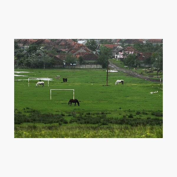 Horses love football too, Romania Photographic Print