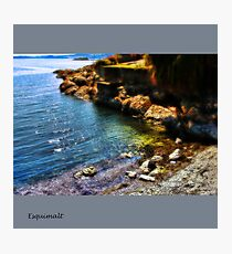 Esquimalt Beach Photographic Print