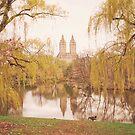 Central Park Springtime Landscape by Vivienne Gucwa