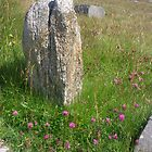 Heidelandstein (Isle of Lewis) von lezvee