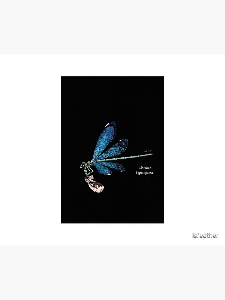 Matrona Cyanoptera by isfeather