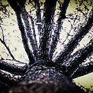 Treefingers by William Clark