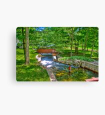 Crystal River Canvas Print