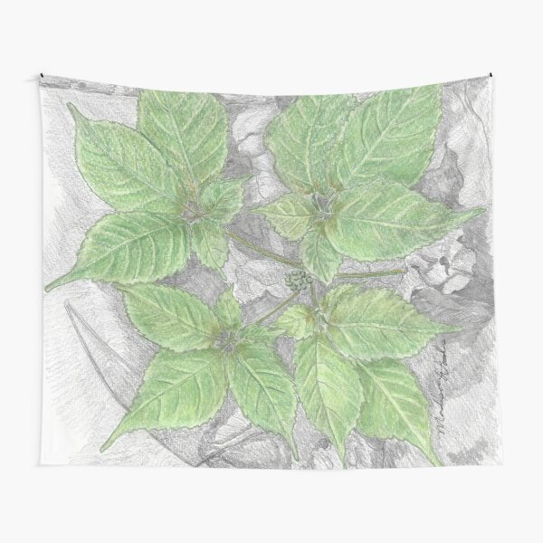Ginseng in May Tapestry
