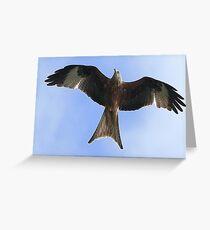 Flight Of The Kite Greeting Card