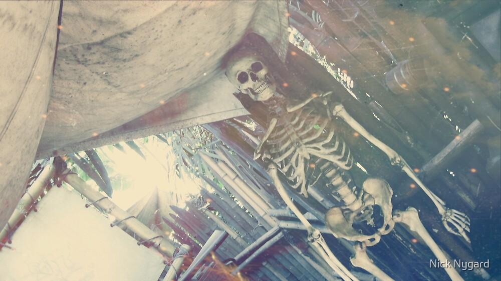 Adventure Bones by Nick Nygard