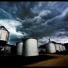 Blue Heron Farm--Tornado Watch by tomcelroy