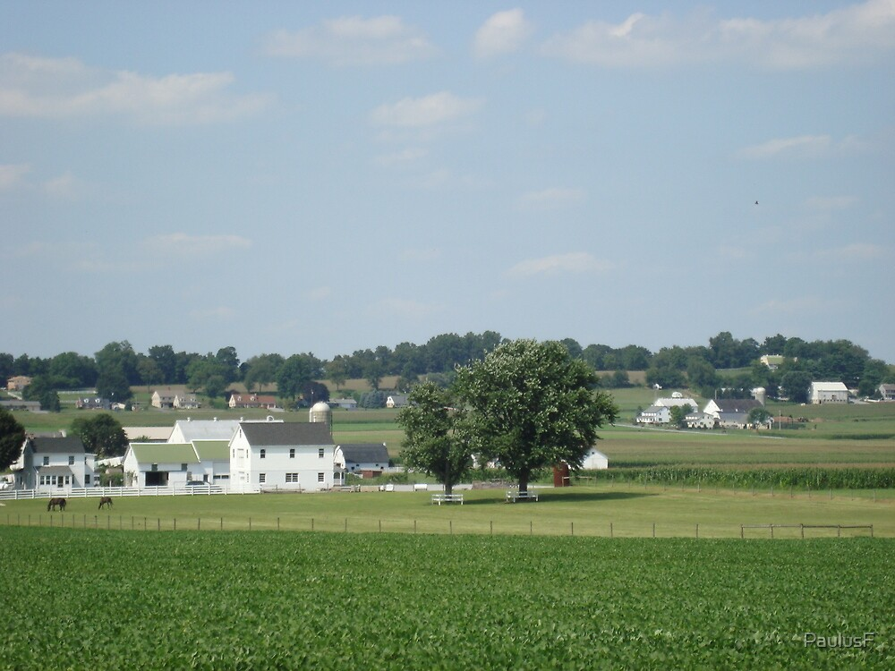 amish country, pa by PaulusF
