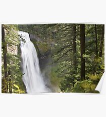 Salt Creek Falls Poster