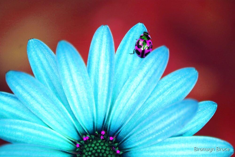 Bright Bug Pink by Bronwyn Bruce