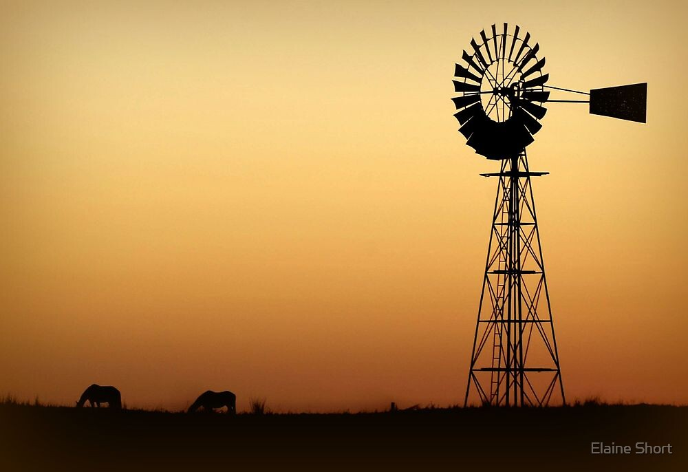 Outback Sunset by Elaine Short