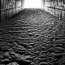 Dark to Light by Bob Larson