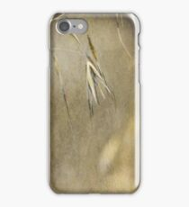 Blooming and seeding  iPhone Case/Skin