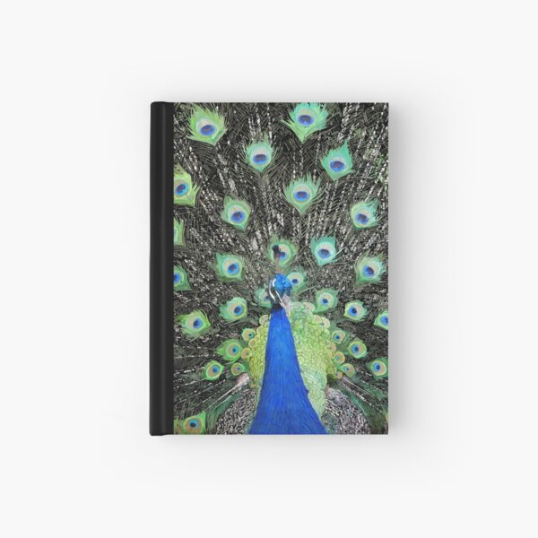 Vanity Has a Thousand Eyes Hardcover Journal