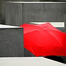 Holocaust Memorial - Berlin by lallymac