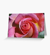 Rosy Rose Greeting Card
