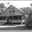 Old Homestead, Yankeetown, FL by Debbie Robbins