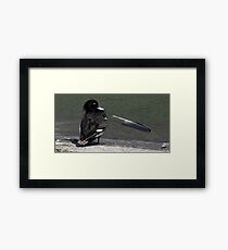 The Tufted Duck Framed Print