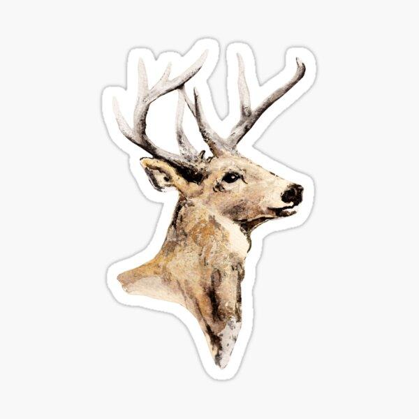 Deer Watercolor Illustration - Hunting / Woodland animal Sticker
