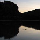 Crocodile Dawn II by Reef Ecoimages