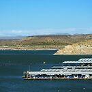 Beat the Heat - Elephant Butte Lake, New Mexico USA by Vicki Pelham