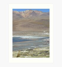 Pink Flamingos in South West Bolivia Art Print