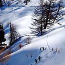 Off Pistes  by Julie Moore