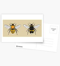 Bumblebee Illustrations Postcards