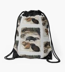 South American Agoutis Drawstring Bag