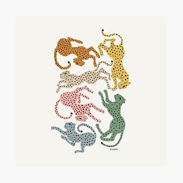 Rainbow Cheetah Photographic Print