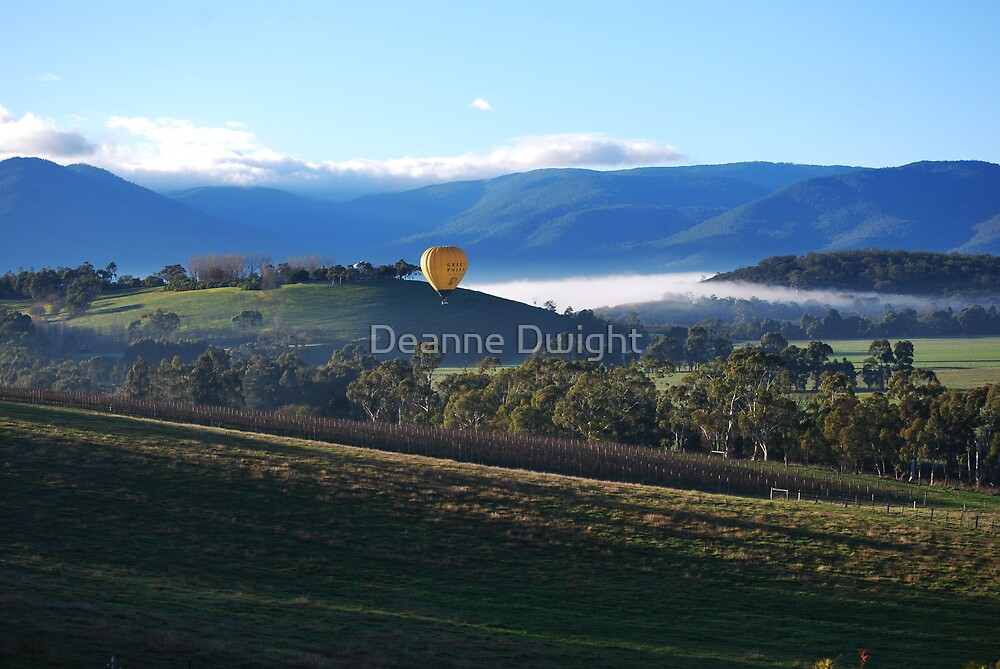 brisk morning in the valley by Deanne Dwight