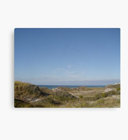 Dunes, Pelicans and the Gulf of Mexico Canvas Print