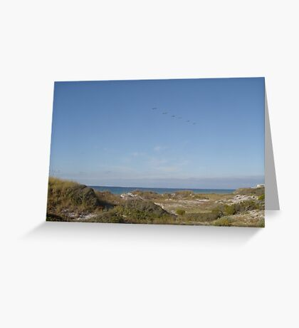 Dunes, Pelicans and the Gulf of Mexico Greeting Card