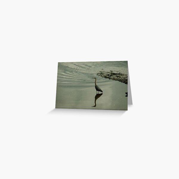 Waiting heron Greeting Card