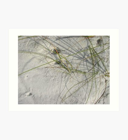 Squiggles, skitters and crab holes Art Print