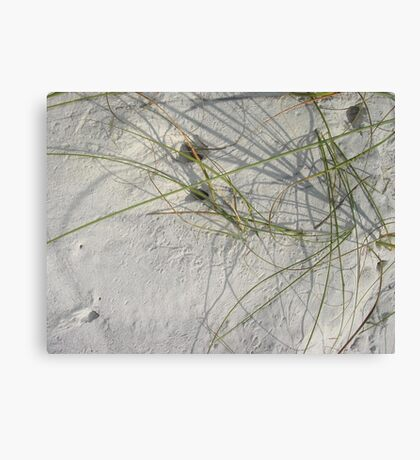 Squiggles, skitters and crab holes Canvas Print