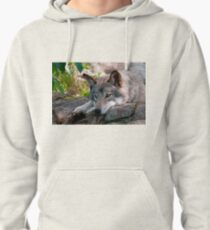 Timber Wolf Pullover Hoodie
