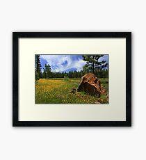 Springtime In Lassen County Framed Print