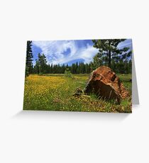 Springtime In Lassen County Greeting Card